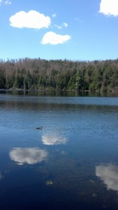 Chalis Pond, North Hudson, NY